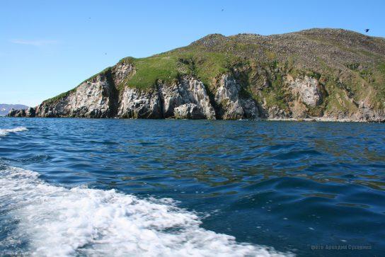 Чукотка примет участие в международной экологической акции «Чистые берега Евразии»
