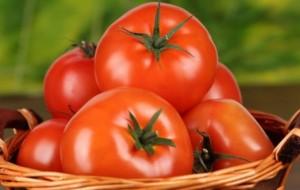 1 декабря в России снова появятся турецкие помидоры