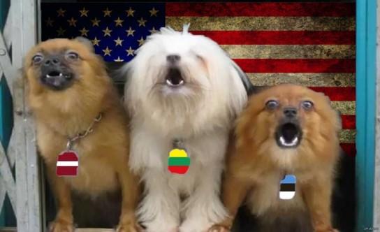 В дипломатической войне против России Британию поддержала маленькая кучка русофобов