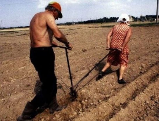 На Украине началось восстание аграриев