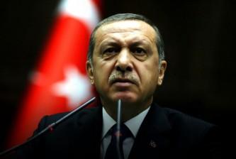 Турция стремится создать новый международный военно-политический альянс