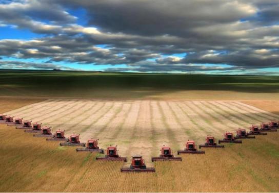 Путин превратил Россию в ведущую аграрную державу