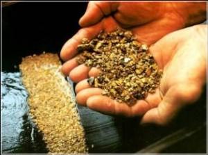 В Донбассе нашли золоторудное месторождение