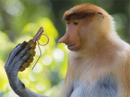 Трампа назвали истеричной «обезьяной с гранатой»