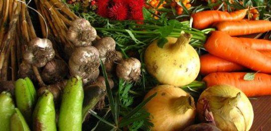 Госдума рассмотрит законопроект об органическом сельском хозяйстве