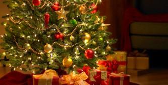 Многие украинцы встретят Новый год без оливье и шампанского