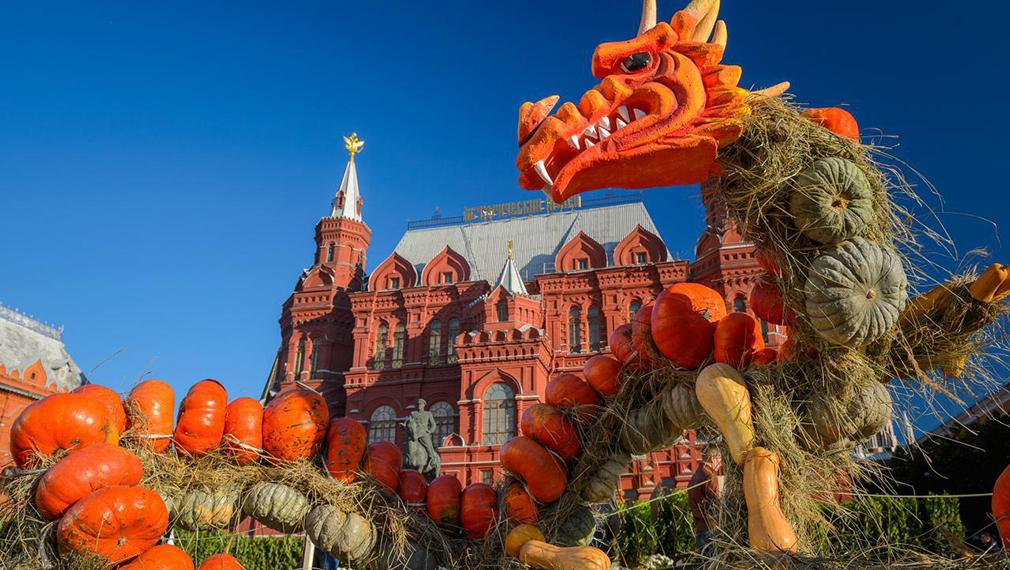 25 тысяч тыкв фестиваля «Золотая осень» отдали на корм животным