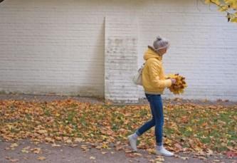 Москвичи не могут решить, что делать с опавшей листвой