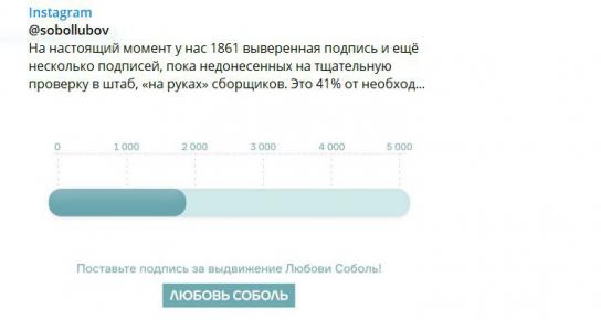 «Подпольный штаб» в Пресненском районе Москвы обеспечивал  Соболь липовыми подписями избирателей