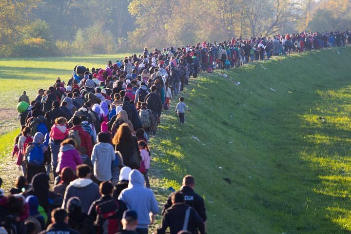 США используют миграцию для усиления собственного господства во всем мире