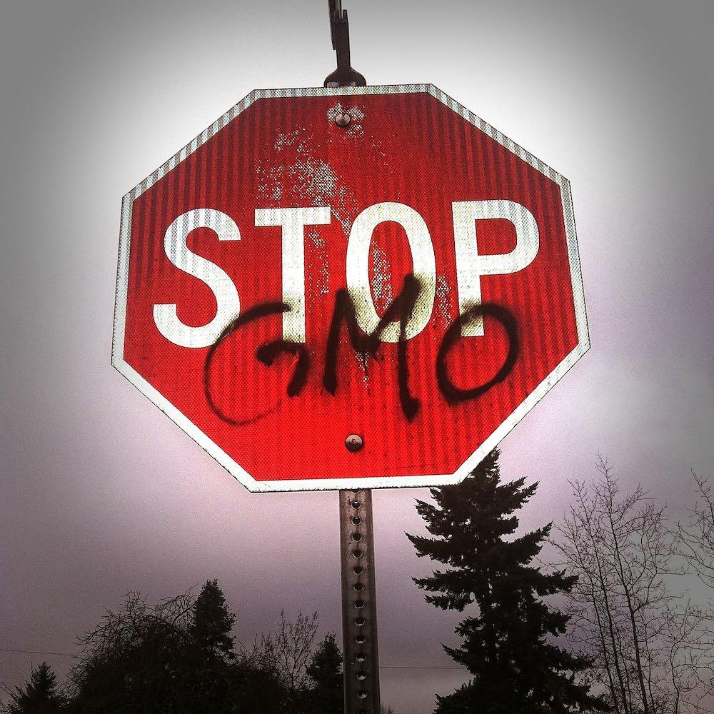 Россия не отменит запрет на использование ГМО в сельском хозяйстве