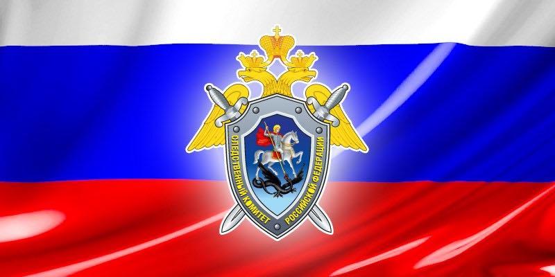Заявление СК РФ по поводу призывов выйти 10 августа на «мирные прогулки»