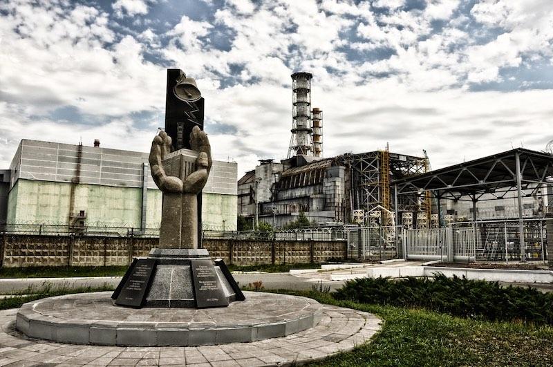 Жители Украины собирают чернику в Чернобыле