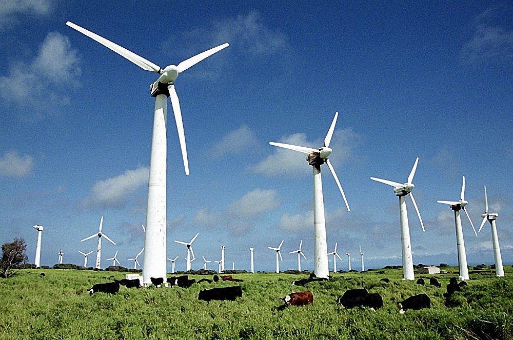 Госдума рассмотрела законопроект о «зелёной» микрогенерации электроэнергии