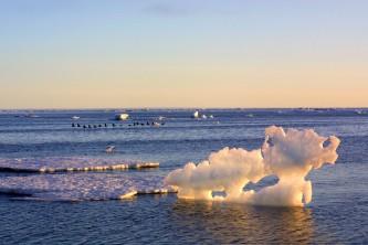 Правительство Чукотки и Ассоциация полярников заключили соглашение о сотрудничестве