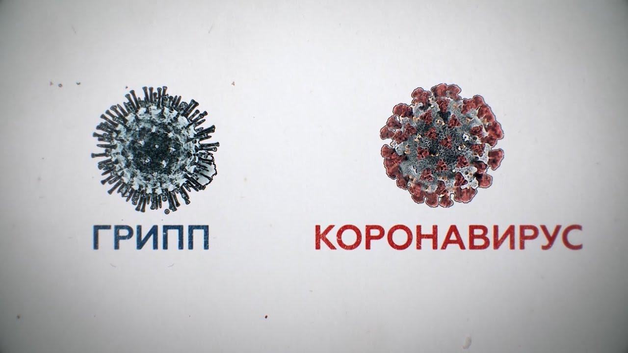 Чем коронавирус COVID-19 опаснее обычного гриппа