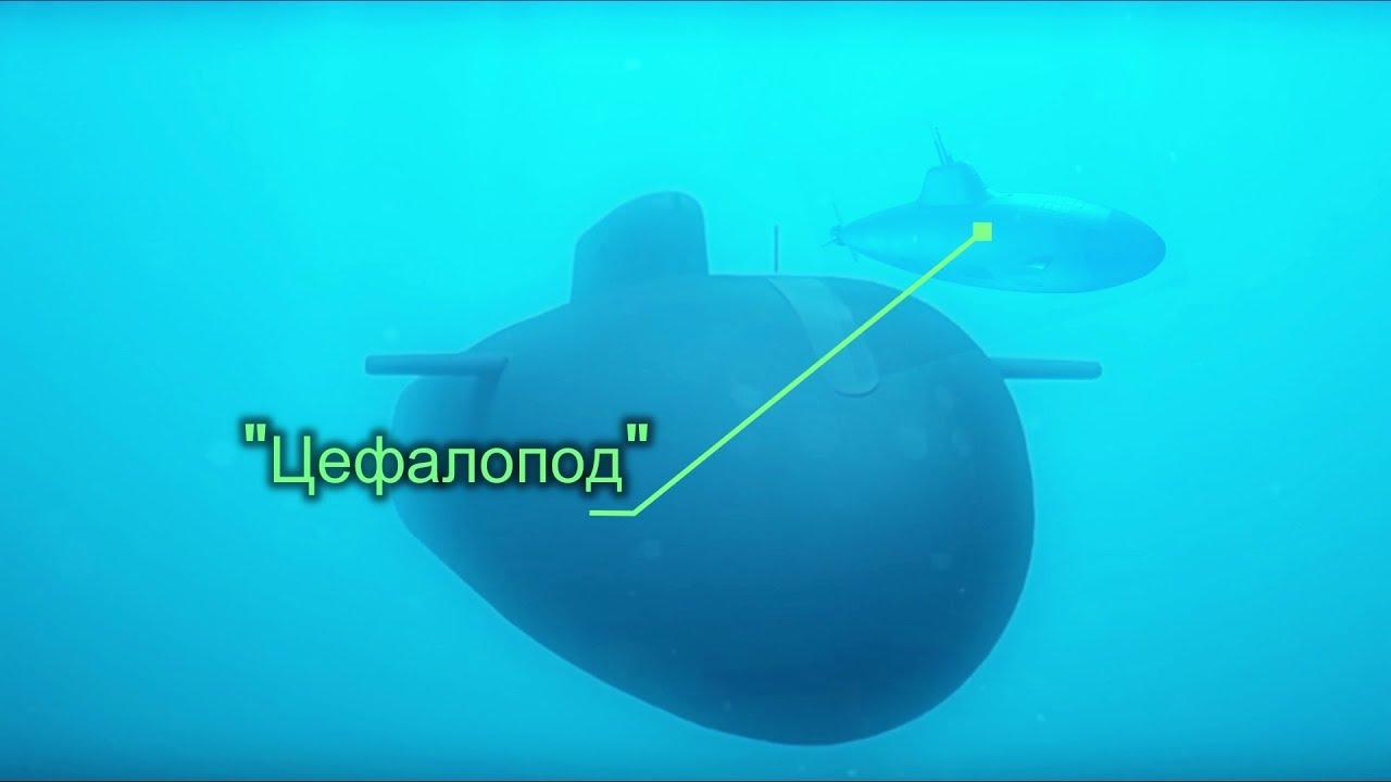 Российский подводный дрон «Цефалопод» обескуражил американских экспертов