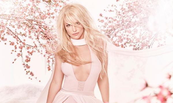 Бритни Спирс сменила микрофон на кисти